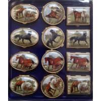 Medicijndoosje Paarden Ov35x30-R30-Rh30x25 H16mm
