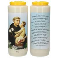 Neuvaine / blanc / St Antoine / prière