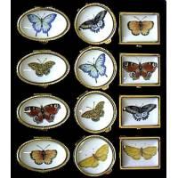 Boite A Pilules Papillons Ov35x30-R30-Rh30x25 H16mm